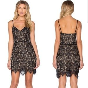 For love and lemons black lace dress